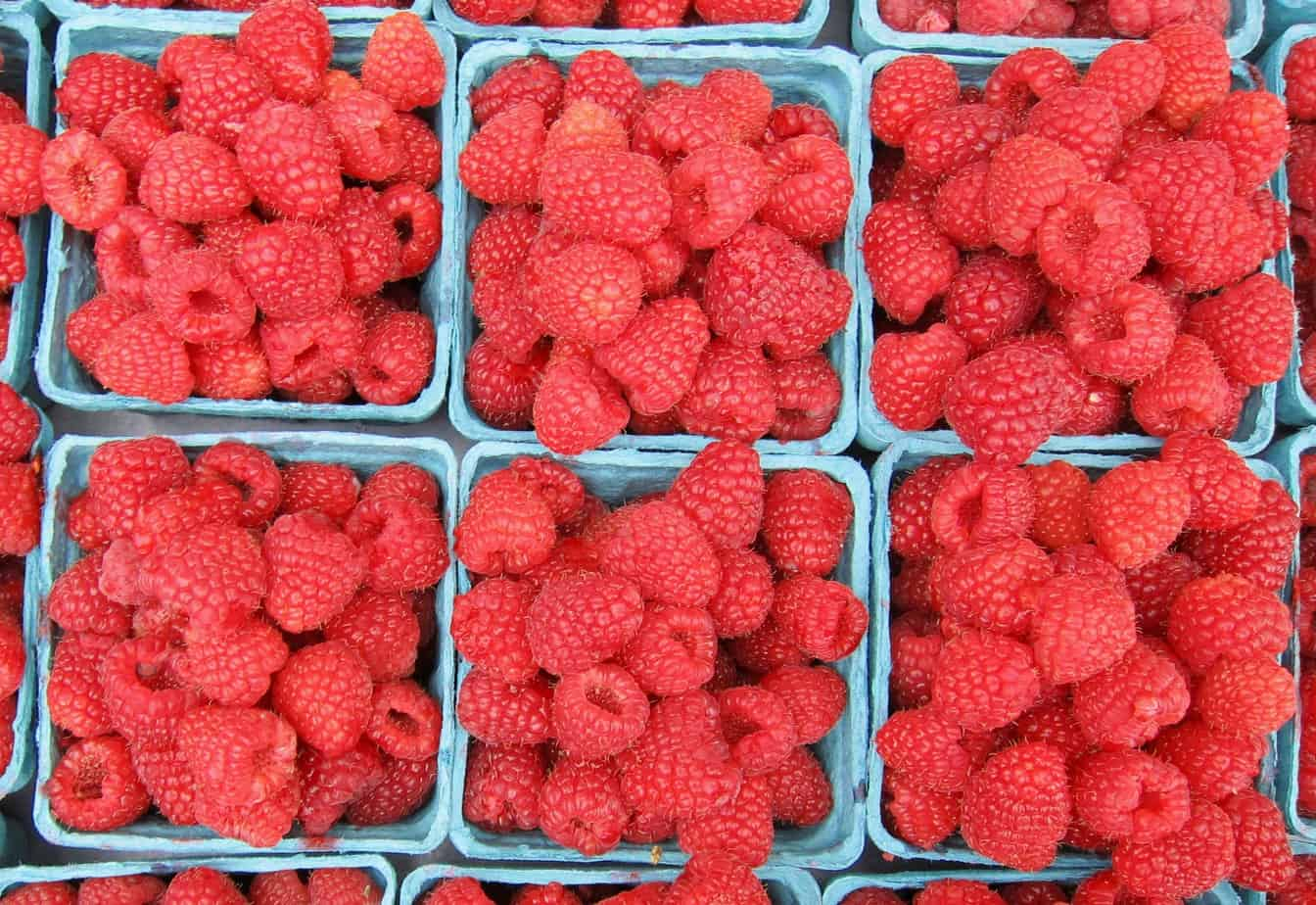Local rasberries
